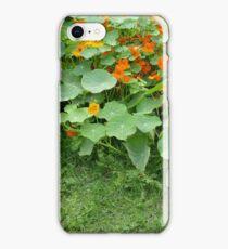 Nasturtium Patch iPhone Case/Skin