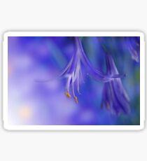Blume Makro Sticker