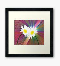 Rainbows and Daisies Framed Print