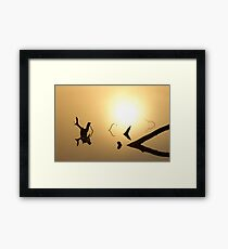 Brush Reflections Framed Print