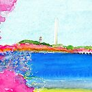 Washington Monument with Cherry Blossoms by danvera