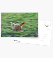 gtg chicken Postcards