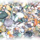 Sea Gems - Watercolour by Francis Drake