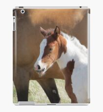 Hi...I Already Have Wiskers!! iPad Case/Skin