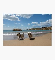 Pals strolling on the beach Photographic Print