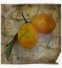 Bitter Lemons Poster