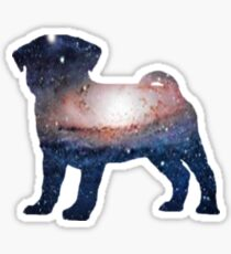 Galaxy Pug Sticker
