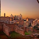 The ancient Roman Forum by Hercules Milas
