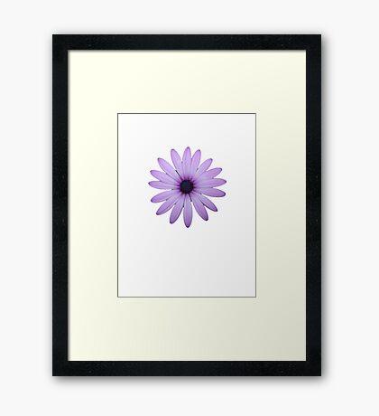 Mauve Flower Tee Framed Print