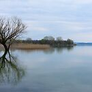 On reflection, it was a tranquil day - Borghetto, Lago Trasimeno, Umbria, Italy by Andrew Jones
