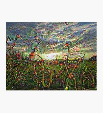 DeepDream Pictures, Landscapes 001 (Traumgeschoepfe) Photographic Print