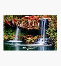 Fern Pool Falls Photographic Print