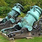 Cannons to the left of me by Scott Mitchell