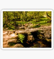 Becca Brook, Dartmoor National Park Sticker