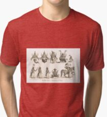 The 10 Avatars or Incarnations of Vishnu Tri-blend T-Shirt
