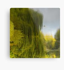 Reflected Willow Metal Print