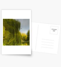 Reflected Willow Postcards