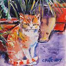 Marmalade Moggy by christine purtle