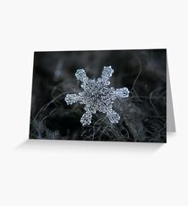 December 18 2015 - Snowflake 1 Greeting Card
