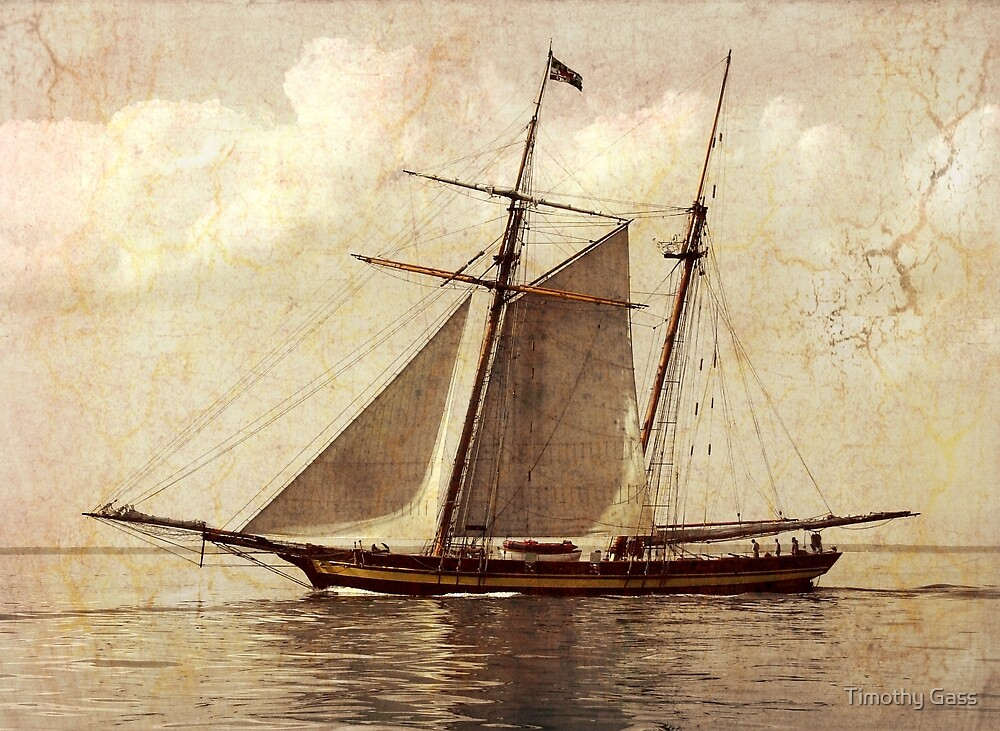 Baltimore Clipper by Timothy Gass