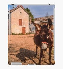 Getting His Back Up iPad Case/Skin