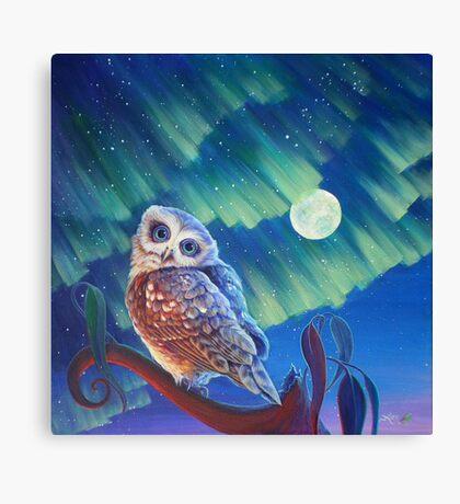 Aurora Owl Canvas Print