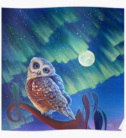 Aurora Owl Poster