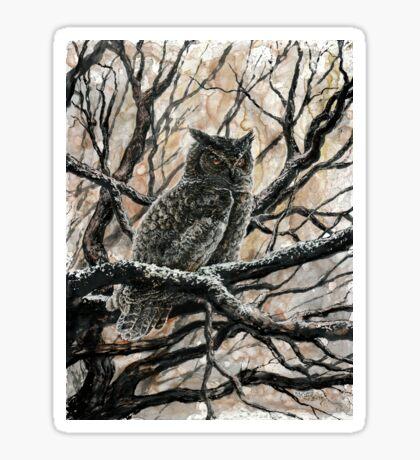 Winter Owl Sticker