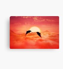 flying dolphins Canvas Print