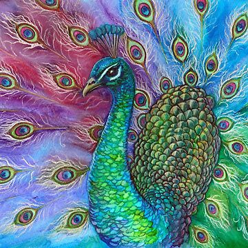 The Perfect Peacock. by katemccredie