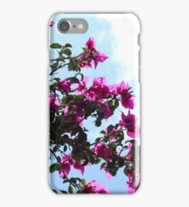 Blossoms on a Tree iPhone Case/Skin