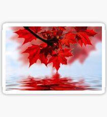 Red Ahorn Sticker