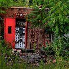 Hidden Generator  by Okeesworld