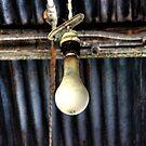 The Bulb by Okeesworld