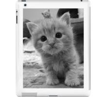 Sooooo Cute iPad Case/Skin