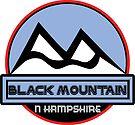 BLACK MOUNTAIN NEW HAMPSHIRE Skiing Ski Mountain Art by MyHandmadeSigns