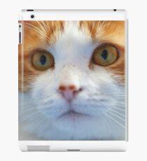 A Cat Named Rattus iPad Case/Skin