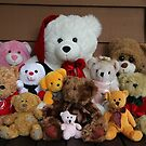 Just Teddies by aussiebushstick