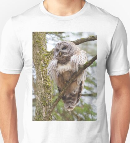 Cool Owl - Barred Owl T-Shirt