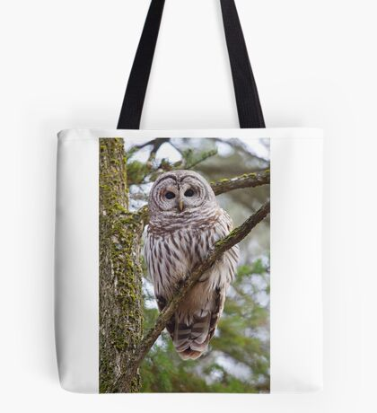 Who, Who, Who cooks for you? Barred Owl Tote Bag