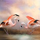 Dance of the Flamingos by Bonnie T.  Barry