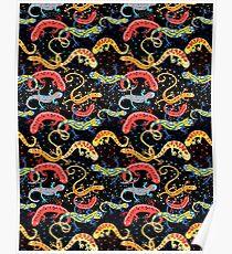Graphic pattern Beautiful salamande Poster