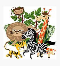 Wild Animals Zoo Animals Giraffe Zebra Lion Photographic Print