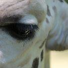 Giraffe's Soul by Okeesworld
