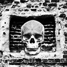 Skull In The Wall by TrippyCat