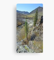 Mountain pastures and rocks Canvas Print