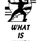 What Is Ninja by Megatrip
