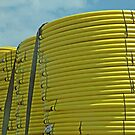Yellow Coils by Monnie Ryan