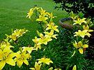 Sunshine in the Garden - Yellow Lilies and Birdbath by MotherNature