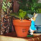 Peek-a-Boo Bunny by Nadya Johnson